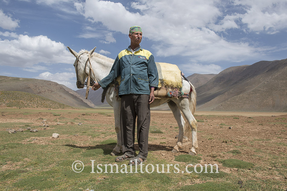 Marokko , Izoughar, 20140530. Ezeldrijver met zijn muilezel. Donkey driver with his mule. Model released.  Naamsvermelding verplicht; Foto: Sabine Joosten/Hollandse Hoogte
