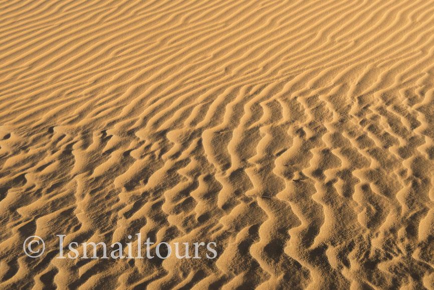 Marokko, Mhammid, 20150316. Woestijn in de lente. Fotoreis. zandvlakte, wandelvakantie in de Sahara woestijn. Foto ; Sabine Joosten