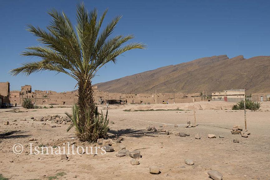 Marokko, Foum Zguid , 20150312. Woestijn landschap, Palmbomen in het zand. Fotoreis ismailtours Desert landscape. Foto ; Sabine Joosten