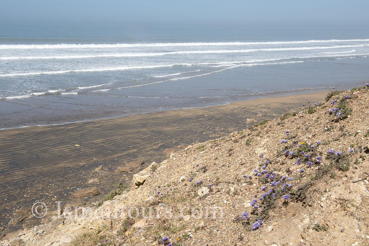 Marokko, Sidi Kaouki, 20150305. Atlantische kust, zee , golven van de atlantische oceaan op een stil verlaten strand. landschap. Landscape, atlantic coast. Waves of the ocean. Naamsvermelding verplicht; Foto ; Sabine Joosten/Hollandse Hoogte
