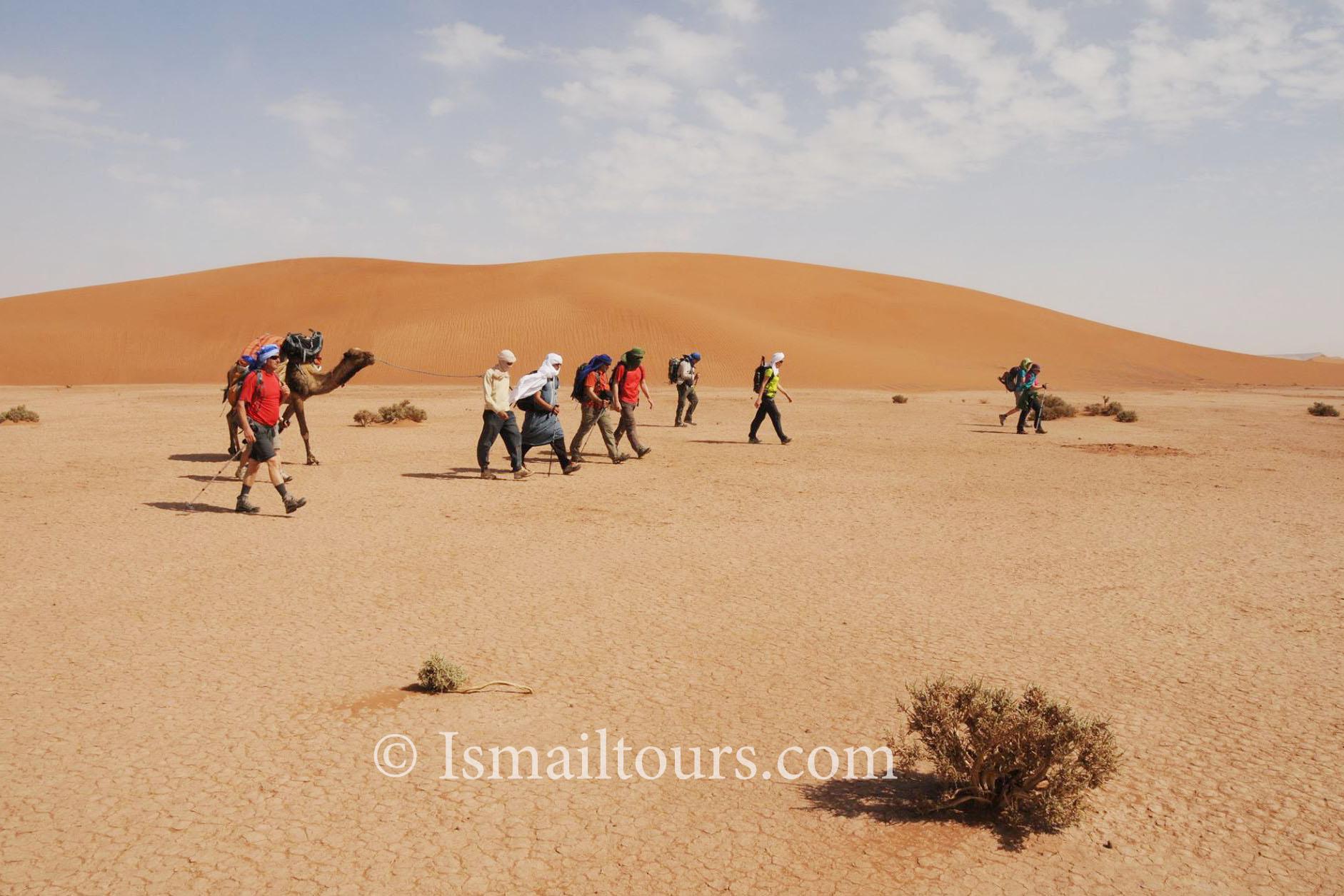 woestijn.jpg