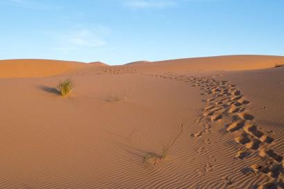 landscape, paysage, mountains, mountain, landschappen, piste, circuit, 4x4, reizen, reis, travel, voyage, trek, trekking, adventure, aleengaand, mesure, randonnée, trekking, holiday, moroc, marokko, afrika, africa, alleengaande, reis, reizen, afrika reis, gids, guide,, desert, woestijn, zand, sand, merzouga, chegagua,  randonnee desert , trekking desert,