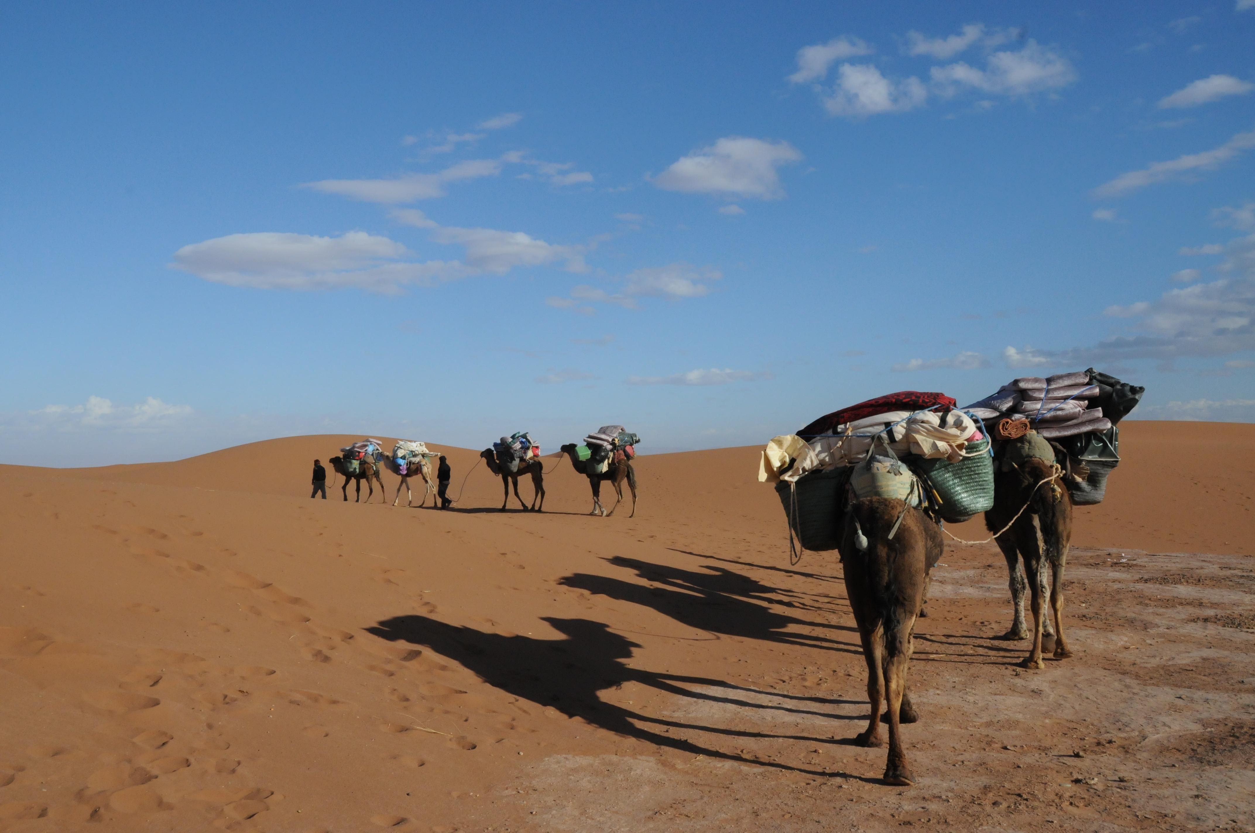trek Maroc 2014 (157)